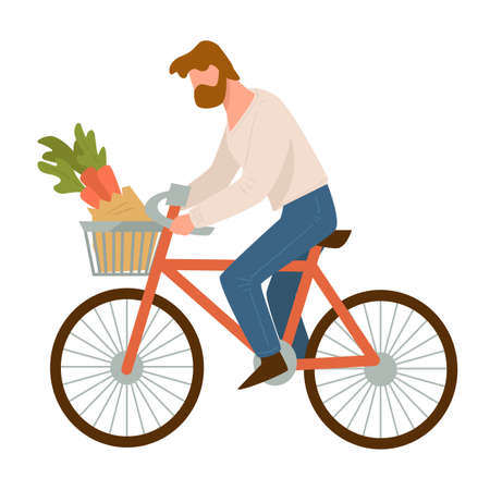 Man riding bike with carrots in basket vector Illustration