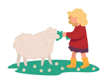 Small kid feeding sheep with grass on meadow