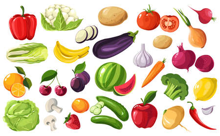Seasonal fruits and vegetables, organic products from farm