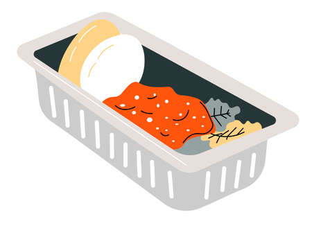 Lunch box with eggs, porridge and salad vector