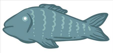 Fish animal, cooking and preparing sea meat food