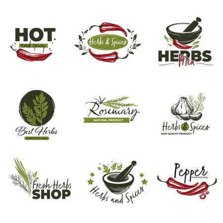 Hot chilli pepper, herbs and spices labels vector