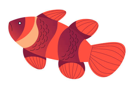 Tropical sea animal, goldfish with stripes vector Illustration
