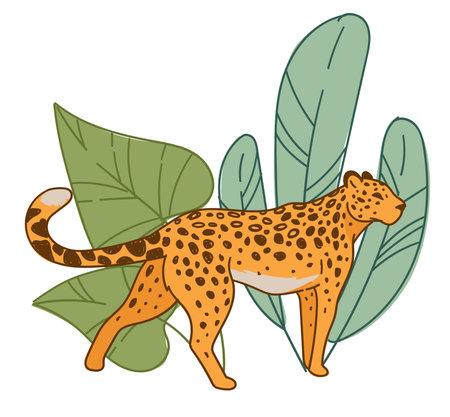 Leopard walking by wide leaves flora, habitat Vektorové ilustrace
