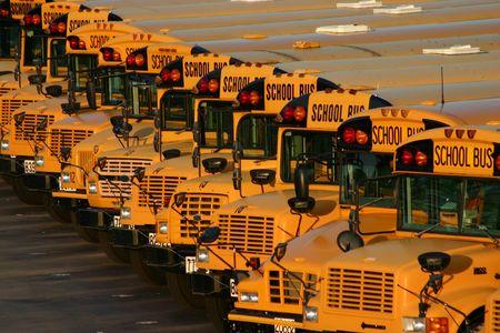 school bus: School Bus Lot