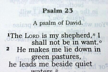 Salmo 23  Foto de archivo - 447303