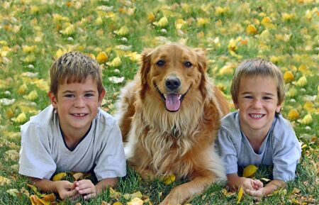Boys with Dog in Fall Stock Photo - 505937
