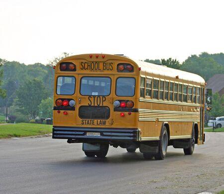 School Bus on Road photo