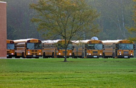school buses: Parked School Buses with Lights on