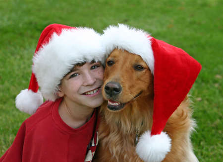 Christmas With The Dog photo