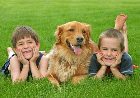 Boys and Golden Retriever Stock Photo