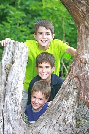 Boys in a Tree photo