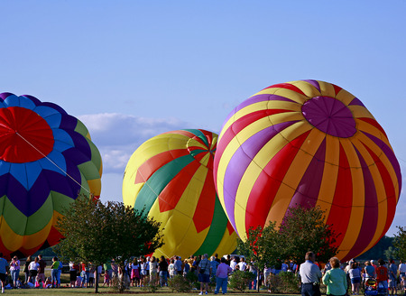 Hot Air Balloons Being Inflated photo