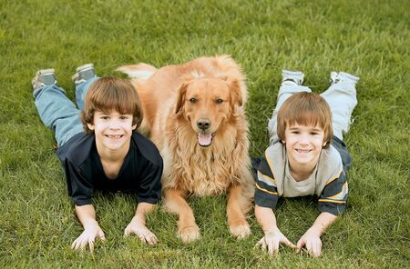 Boys Laying down With Golden Retriever Stock Photo