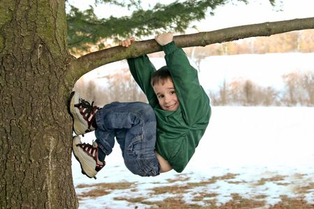 to climb: Boy Climbing a Tree in Winter