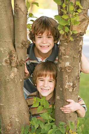 Boys in a Tree Banque d'images