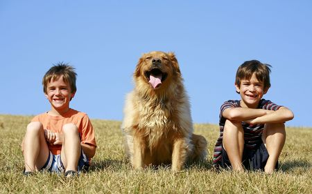 Boys and Dog on a Hill Stock Photo - 2634267