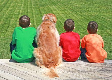 cani che giocano: Tre ragazzi e un cane  Archivio Fotografico