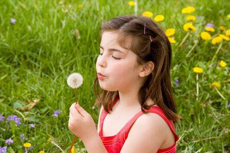 blowing dandelion: Bambina che soffia semi di dente di leone