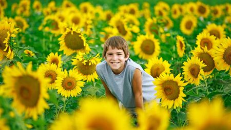 Teenager In A Sunflower Field