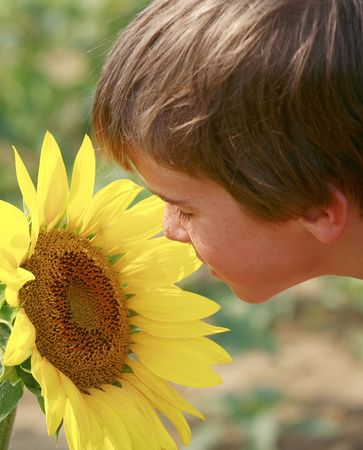 Boy Looking at a Big Sunflower photo
