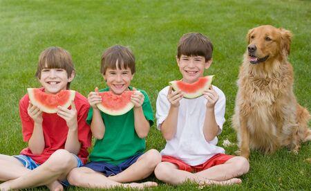 cani che giocano: Mangiare tre ragazzi anguria  Archivio Fotografico