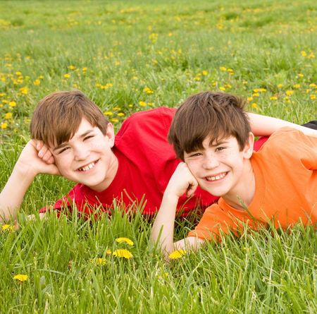 Brothers Laying in a Field Stock Photo - 3261507