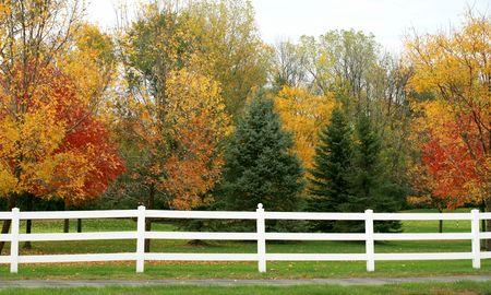 Witte picket fence in de herfst