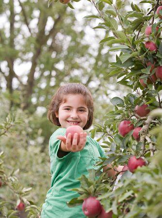 Little Girl montrant une pomme Banque d'images - 3678914