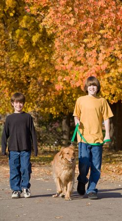 Boys Walking the Dog in the Fall Banque d'images