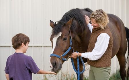 mujer en caballo: Chico de alimentaci�n caballo Foto de archivo