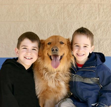 Boys and Golden Retriever Stock Photo - 4052436