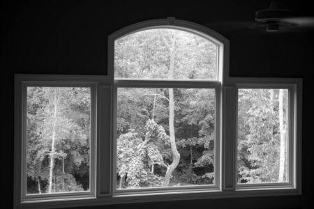 Window Scene photo