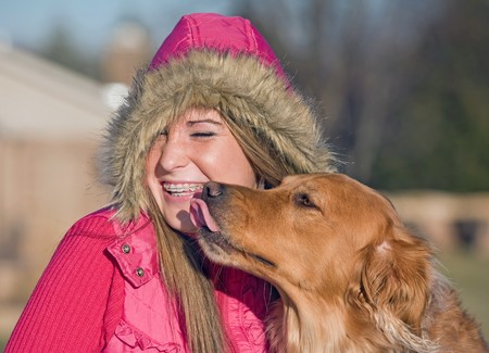 Dog Kissing Teenage Girl Stock Photo