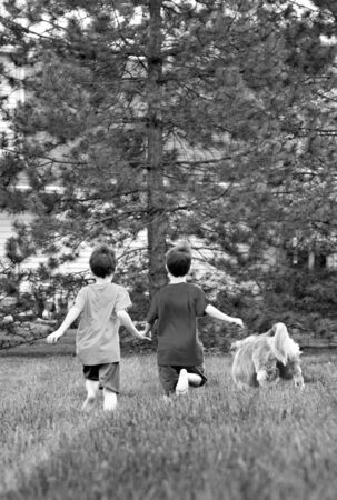 Boys Running with Their Dog photo