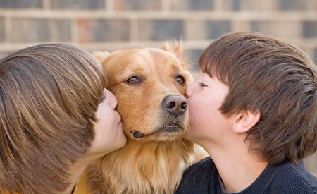 Boys Kissing Dog photo