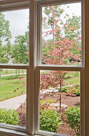 windows: Window View of Front Yard