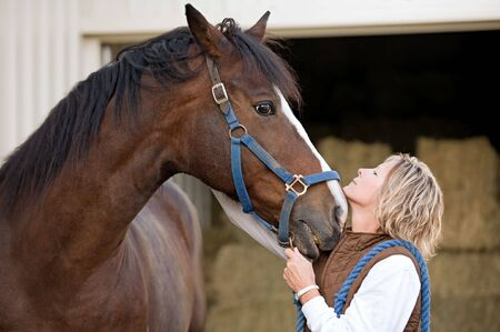 Woman's and Horse's Faces Together Stock Photo - 4641633
