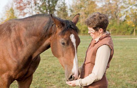 dutch girl: Trainer Feeding Horse