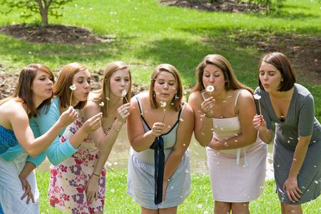 Group of College Girls Blowing Dandelion Seeds Stock Photo - 4838662