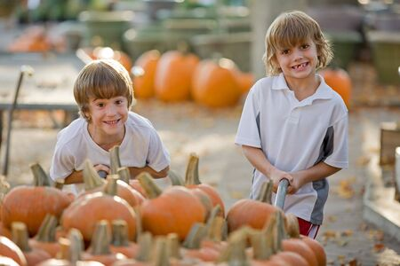Boys Playing with Wagon Full of Pumpkins photo
