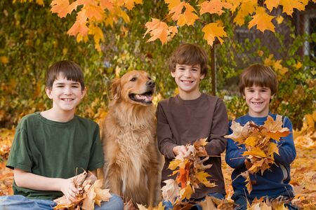Boys in the Fall Leaves Stock Photo - 5807409