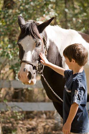 chevaux noir: Little Boy Happy pour �tre caresse un cheval.  Banque d'images