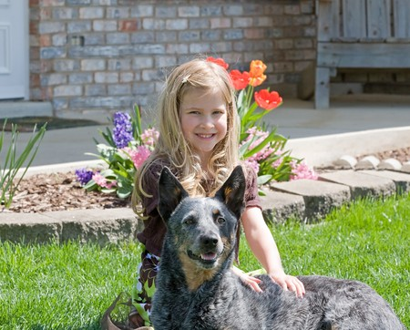Cute Little Girl With Her Dog Banco de Imagens