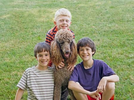 Drei Boys Playing With Their Dog  Standard-Bild - 7538936