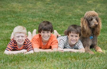 그들의 개로 놀고있는 세 소년