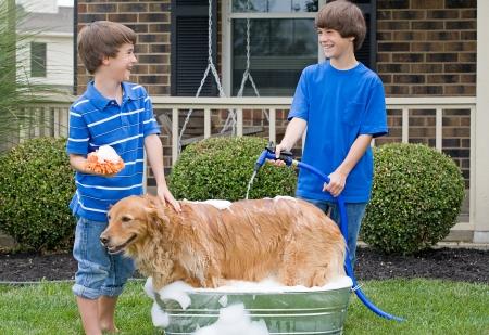 bath: Boys Giving Dog a Bath