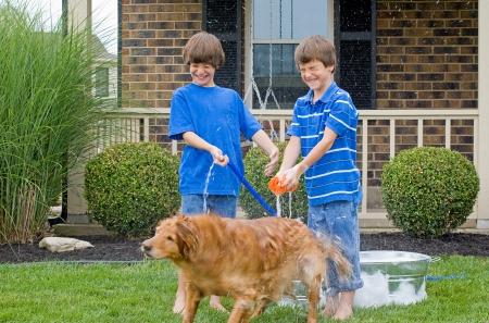 Jungen geben Hund ein Bad Standard-Bild - 22627213