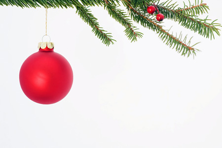 Christmas Ornament Hanging from Tree