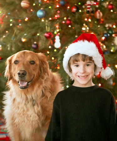 Boy and Dog at Christmas photo